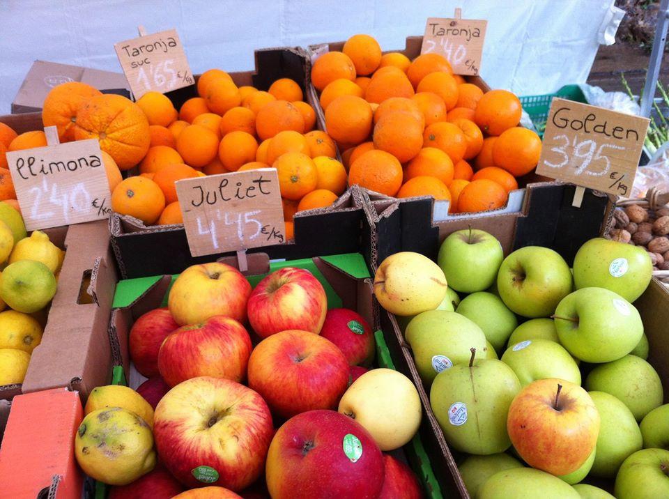 Fetaosona Mas Jalech fruites ecològiques