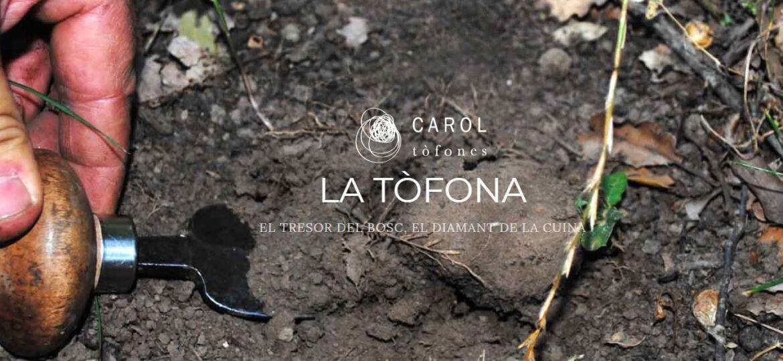 can-carol-2-1