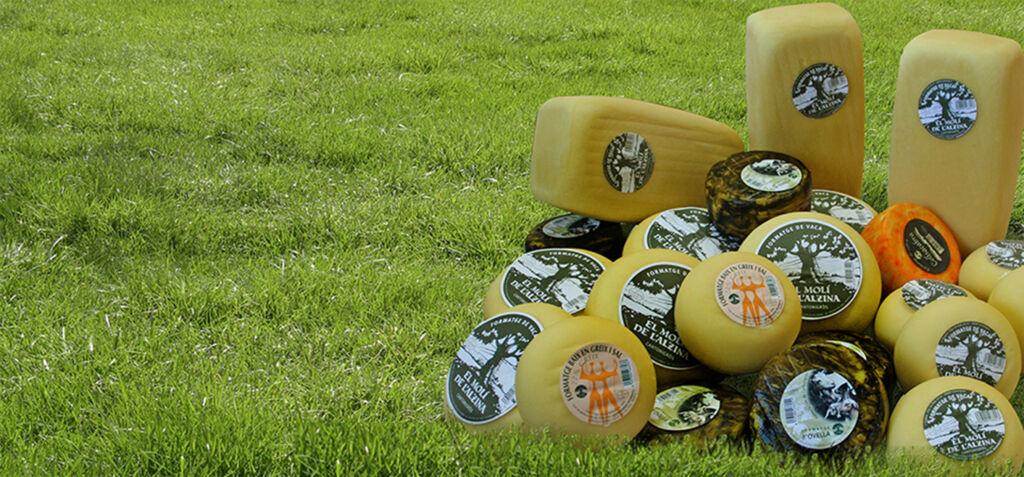 fetaosona - Formatgeries de Cantonigros - Conjunt formatges