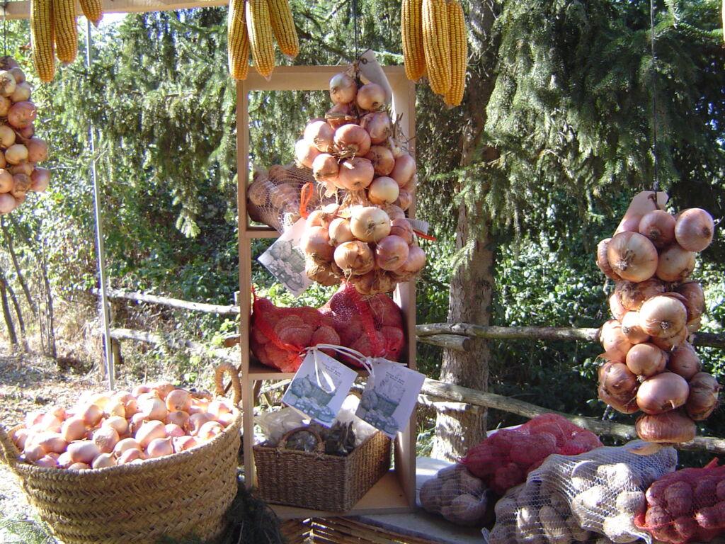 fetaosona associacio de productors patata del bufet